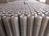 廣東大瀝建筑施工碰焊網鋼筋網電焊網各種篩網現貨批發