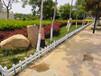 佛山pvc護欄PVC圍欄塑鋼圍欄塑鋼護欄草坪圍欄廠家