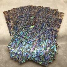 新西蘭鮑魚貝殼紙貝殼馬賽克圖片