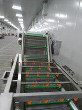 大型蝦仁包冰衣機線蝦仁包冰衣機流水線蝦仁包冰衣機圖片