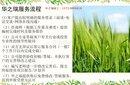 桃江县做节能报告专业公司-桃江县做节能评估报告图片