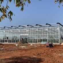浙江农产品展销种植玻璃温室大棚地基一米埋深、7000平方施工厂家