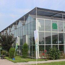 江苏智能物联网玻璃温室阳光房高效控光控温湿度、8米一开间型建造成本