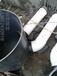 南平塑料雨水井价格塑料雨水井厂家塑料雨水井批发正林
