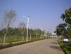 沙坪坝整套太阳能路灯怎么卖?