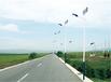 九龙坡8米太阳能路灯杆件