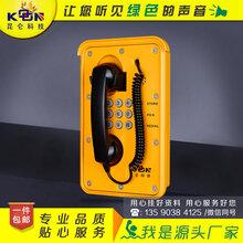 昆侖隧道口緊急IP電話機圖片