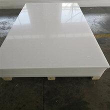 益阳供应半导体厂专用PP板材耐磨绝缘聚丙烯板材高分子塑料板图片
