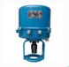 381RSD-100381RXD-100阀门电动执行器电动阀门