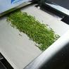 西安圣達流水線式茶葉殺青機廠家定制微波茶葉殺青設備
