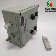 XLGNYD-12防爆遙控高能點火器