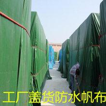 PVC復合材料防水布塑料篷布加工防水帆布刀刮布圖片