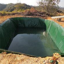 帆布鱼池养锦鲤的好坏处-大型养殖鱼池蓄水池图片