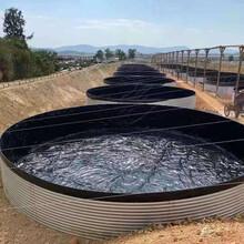 加厚大型圆形折叠帆布鱼池刀刮布高密度养殖池蓄水池锦鲤水箱支架图片