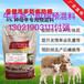 养母羊体质好的饲料母羊营养饲料