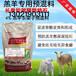 黑龙江小羊料精羊羔吃什么料长比较快