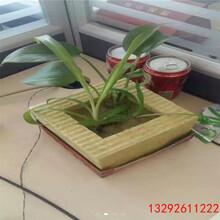沧州保温棉价格钢结构屋顶专用玻璃棉毡图片