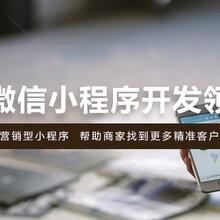 天津网站建设小程序开发公众号制作APP软件开发