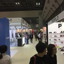 2020年春秋日本東京國際鞋類展覽會FWT圖片