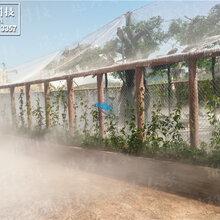 人造雾工程喷雾景观就找贵州锦胜雾森人造雾专家,冷雾雾森系统景观