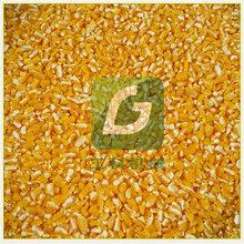 玉米脱皮制糁机,大豆黄豆脱皮机打糁机图片