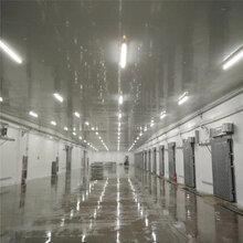 雪盾组合冷库厂家彩钢不锈钢冷库板定制蔬果保险冷库图片