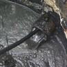 汉阳区鹦鹉疏通油污管道技术好