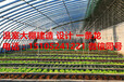 日光节能温室大棚江西景德镇昌江区日光节能温室大棚每亩地的补贴