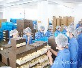 上海月饼批发-上海批发月饼厂家、月饼礼盒装批发苏州新闻网