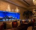 湖北大型大型鱼缸订做≈技术培训演示_技术培训演示厂商_大型大型鱼缸订