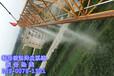 宁德建筑工地塔吊喷淋系统哪家质量好