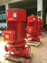 XBD立式單機泵-多級消防泵-噴淋泵廠家-上海威泉泵業制造有限公司