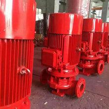 3cf消防泵廠家排污泵廠家消防泵價格便宜-上海威泉泵業制造有限公司