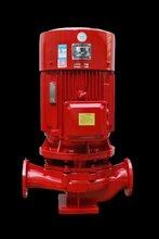 上海威泉XBD2.5/38多級噴淋泵自動給水泵消防泵選型