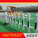 丹東護欄塑鋼圍墻護欄PVC草坪護欄