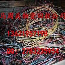嘉兴市回收四芯电缆回收报价有保障图片