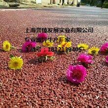 邯郸市透水混凝土地坪厂家透水混凝土施工步骤彩色透水混凝土