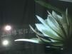 上海全息投影3D立體櫥窗展示