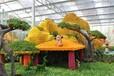 漳州熱帶水果展銷玻璃溫室大廳高10m魯源制造