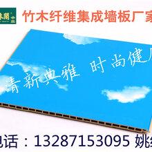 湖南怀化市竹木纤维集成墙板450生产厂家