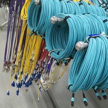 專業生產室內光纜、跳線廠家圖片
