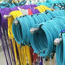 朗訊光通信專業生產室內光纜萬兆(1-48芯)光纜圖片