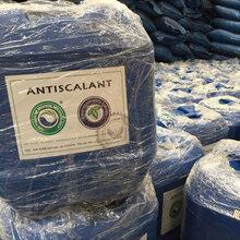 江苏现货直供美国蓝旗阻垢剂BF106反渗透设备阻垢剂厂家净化水处理药剂批发品质保证