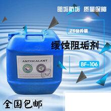 反渗透阻垢剂的作用RO膜高效阻垢剂BF-106美国蓝旗阻垢剂