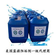 蓝旗反渗透阻垢剂河南一级代理高效阻垢分散剂