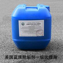 山东厂家批发反渗透阻垢剂蓝旗阻垢剂循环水反渗透阻垢剂