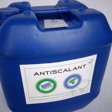 水处理阻垢剂厂家批发美国蓝旗反渗透阻垢剂BF-106高效防蚀阻垢剂