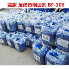 缓蚀阻垢剂成分美国蓝旗反渗透阻垢剂BF-106反渗透还原剂