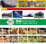 邢台沙河狗场位置每日报价图片3