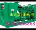 沧州市南皮县小型专用发电车出租,发电机出租首选定邦机电